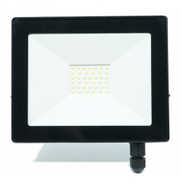 LED reflektor 30W ARGUS LIGHT